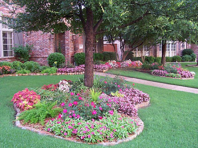 Around the trees for Front yard tree landscaping ideas