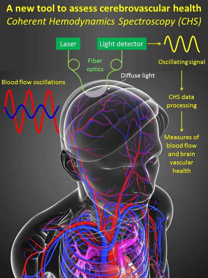 Optic technology to diagnose and monitor brain damage