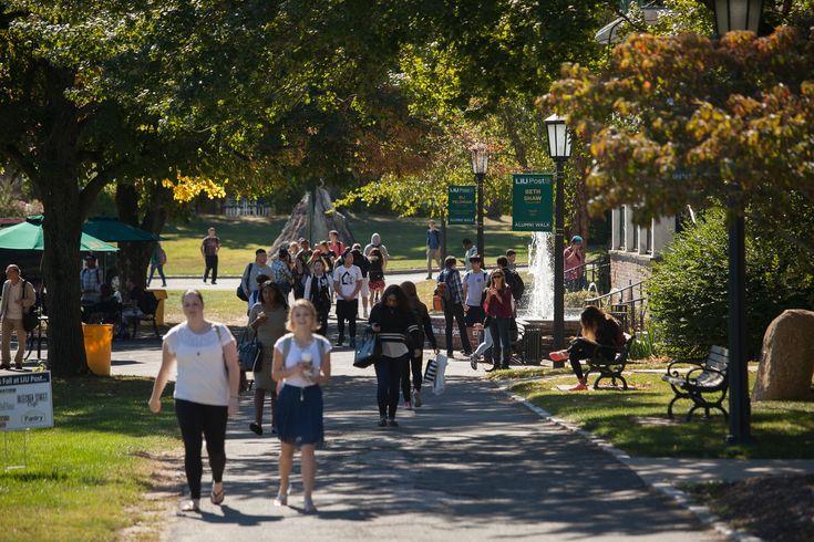 Long Island College Summer Registration Guide