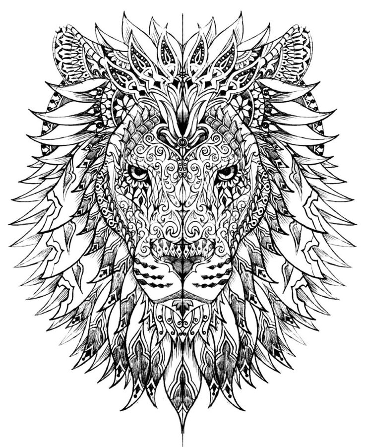 free coloring page coloring adult difficult lion head lion head drawn with very smart and harmonious patterns - Color Pages For Adults
