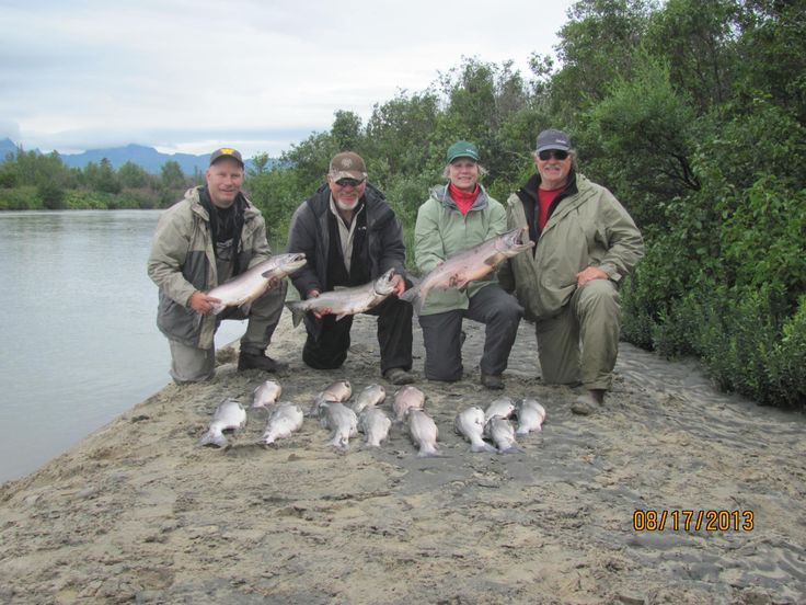 how to catch silver salmon on the kenai river