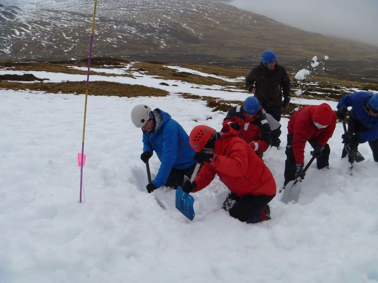 Avalanche Rescue Mountain Climbing First Aid Search