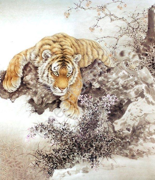 Tang Jiang Тигр в стили гохуа, картина раскраска своими руками. размер 40*50см
