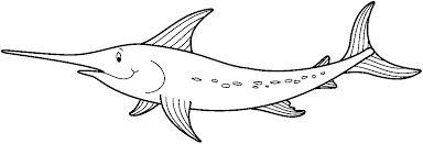 imagenes de animales marinos para colorear pez