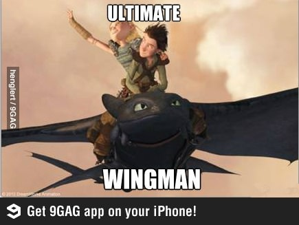 how to train your dragon wingmans
