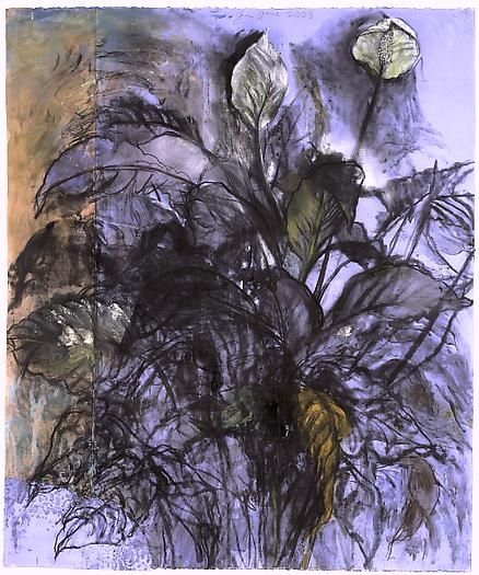 Cool Air, 107 Degrees, 2003 Charcoal, pastel and ink on collaged paper 44 x 37 in.