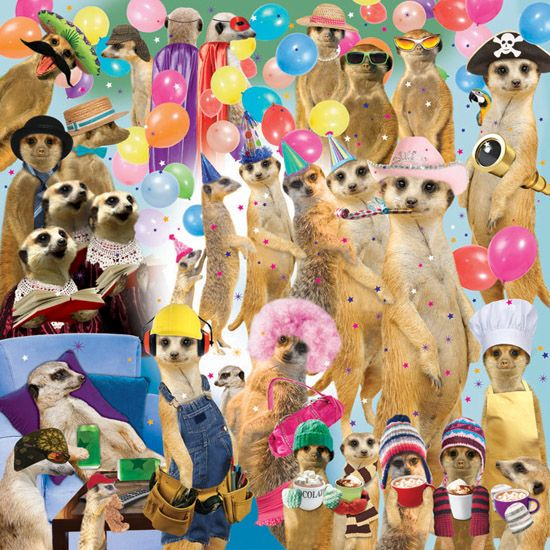 Meerkat Madness Square Jigsaw Puzzle