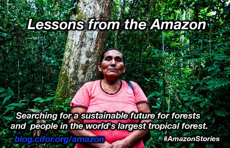 We're proud to announce the launch of our #Amazon multimedia package! Over the next 2 weeks we will be featuring stories from the #Brazilian, #Peruvian and #Ecuadorian Amazon forests under the hashtag #AmazonStories.