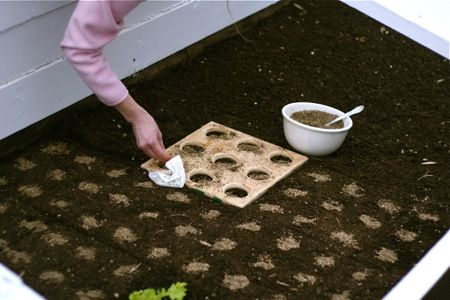 Use a template to get perfect rows...of course!Square Foot Gardening, Gardens Squares Foot Boards, Raised Beds, Design Handbags, Foot Plants, Squares Foot Gardens Ideas, Plants Templates, Plants Seeds, Gardens Templates