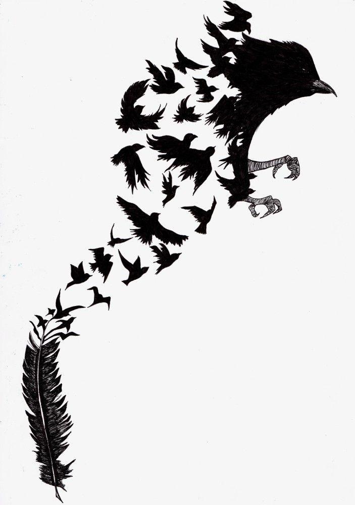 bird metamorphosis