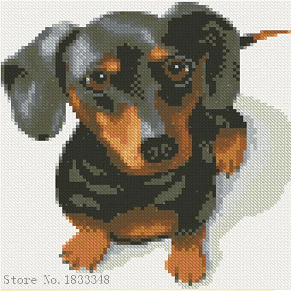 diamant broderie saucisse chien 5d diamant mosaque animal diamant peinture point de croix perles icne ensemble
