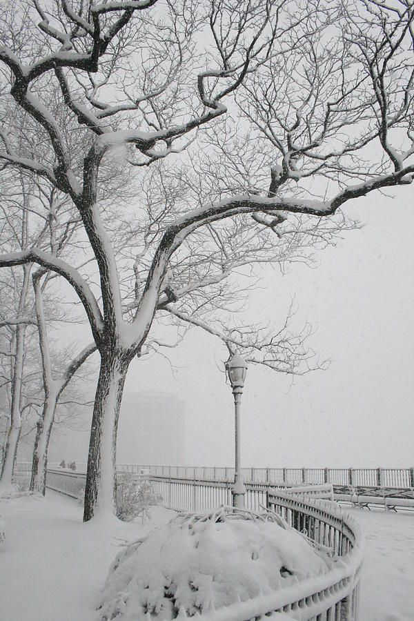 """A Noreaster in Brooklyn"" -- [Snow falls from a Nor'easter in early 2010, on the Brooklyn Heights Promenade - Brooklyn, New York.]~[Photographer Christopher Kirby - 2010]'h4d'121206"