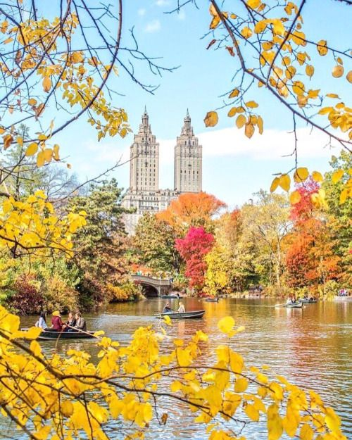 Central Park by Kelly Kopp @kellyrkopp | New York City Feelings | Bloglovin'