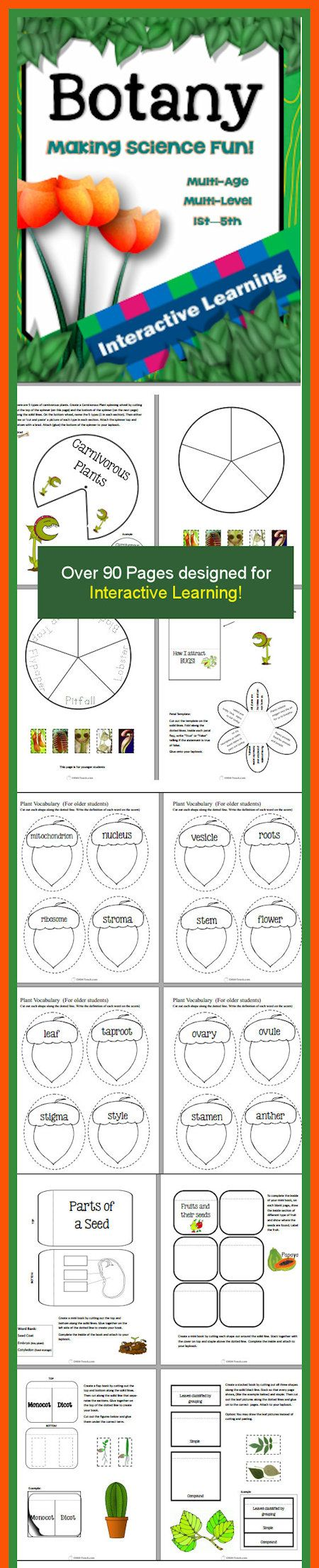 Designed for multi-age / multi-grade and allows students to create a beautiful, lasting project by the end of their study.  Topics/Areas covered in the unit: - What is Botany? What is a Botanist? - Parts of a plant (and their functions) - Anatomy of a flower (and functions of each part) - Flower to Seed reproduction - Parts of a seed - Types of seeds - Photosynthesis - Parts of a plant cell (and functions) - How plants are classified - Classification of leaves - Non-flowering plants…
