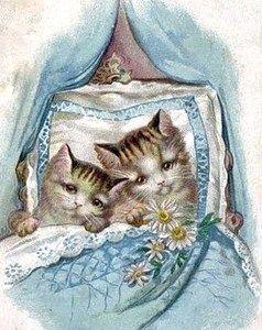 .Vinetage kaart kittens in hun wieg,..................