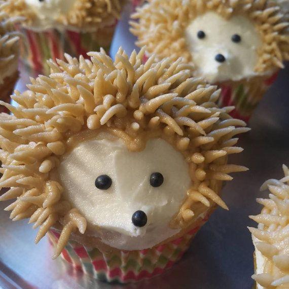 Best 25 Hedgehog Cake Ideas On Pinterest Porcupine Cake
