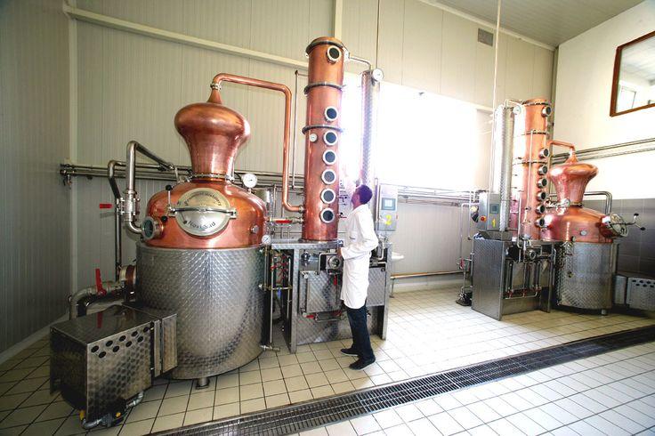 Proizvodnja Rakije Proces Proizvodnje Tehnologija