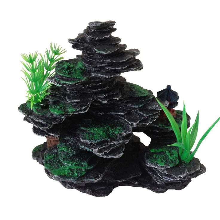 1000 ideas about plastic fish tank on pinterest for Small plastic fish