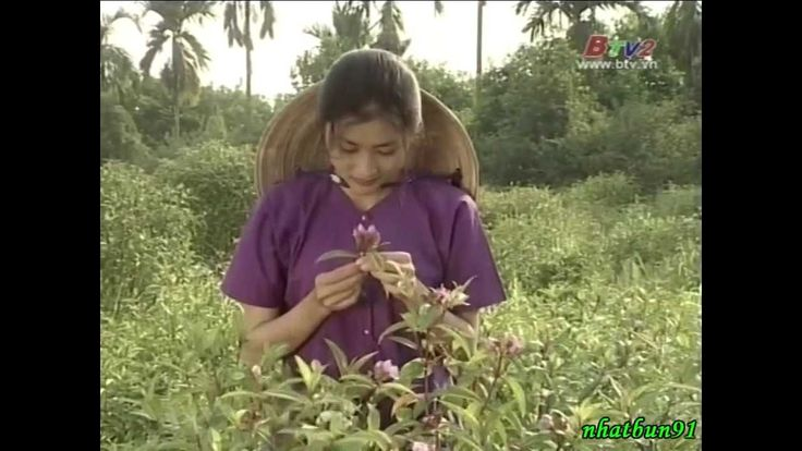 Ba người đàn bà (phim Việt Nam)
