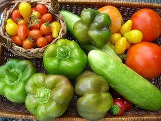 Guide to fall vegetable planting in North Texas....