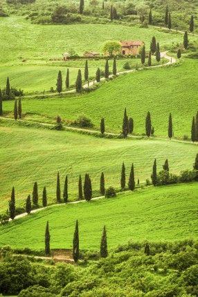 В студеното зимно време решихме да ви пратим лъч слънчева красота, като ви покажем Тоскана. Това е административен регион на Италия. Тоскана е един на най-важните италиански региони заради своето историческо, художествено, икономическо и културно наследство. Пожелаваме на себе си и на вас скоро... - Фото галерии