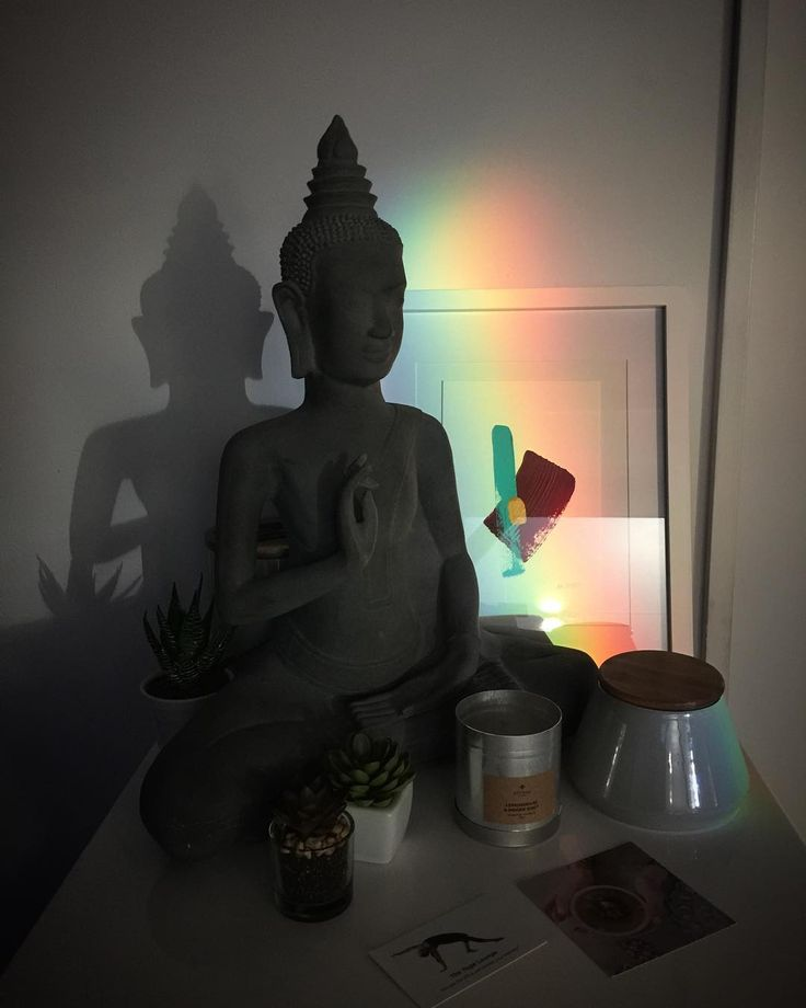 Perfect sight . . . . . .  #buddha #yoga #perfect #santosha #peacefull #theyogaloungenz #wellingtonyoga #wellington #hotyoga
