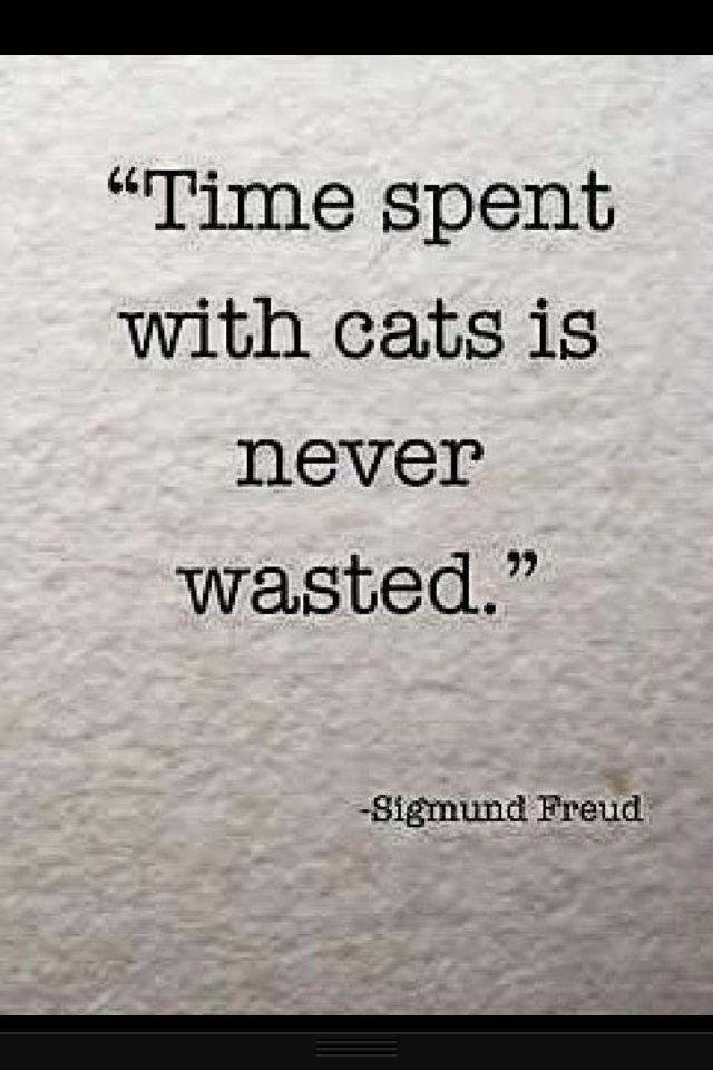 I can't decide if this is credible or not, coming from Sigmund Freud. But I still believe it.