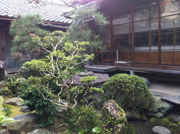 Japanise garden  of a husband's parents' home.