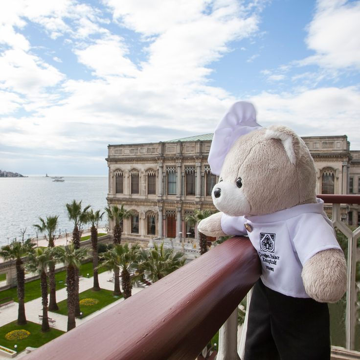 Chef Teddy is mesmerized by the Bosphorus, as he day dreams about having his wedding at the Palace. He ponders over his many options for his future bride even though he doesn't have a bride yet… #ChefTeddy