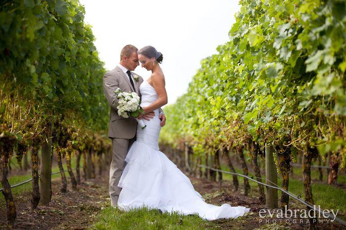 Sileni weddings - photography by Eva Bradley, Hawkes Bay photographer