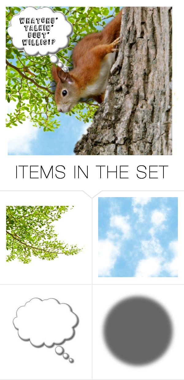 """Squirrel Humor"" by fowlerteetee ❤ liked on Polyvore featuring art"