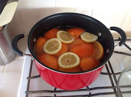 Home Deodorizer Air Freshener Boil: 2 Grapefruits, 1/2 Lemon, 1 Cinnamon stick, 1tbsp Vanilla. Makes the whole house smell wonderful!