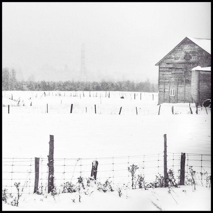 #baiestpaul #charlevoix #moncharlevoix #winter #storm #snowstorm #minimalism #minimalism #minimalmood #blackandwhite #blackandwhitephotography #bnw #noiretblanc #bnw_society #nikon #d750 #nikonofficials #landscape #landscapephotography #winterscape #travel #travelphotography #wanderlust #explore #roadtrip by fleurdelotux