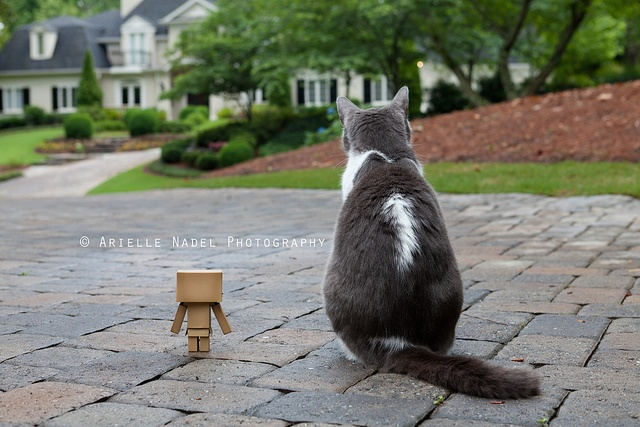 Waiting for Someone to Come Home by Bunnyrel, via Flickr