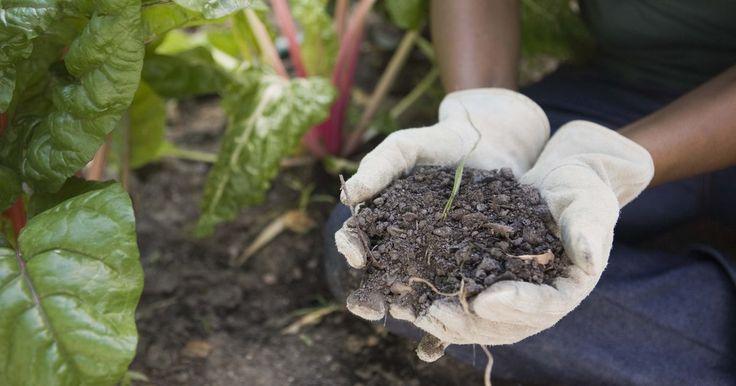 La composición química de los suelos. Los ambientes de los suelos varían según la ubicación en términos de contenido, estructura y composición química. La composición química de los suelos afecta la manera en la que los nutrientes circulan a través de sus entornos, lo que determina la fuerza general para el crecimiento de la planta. La composición química depende de la acidez, la ...