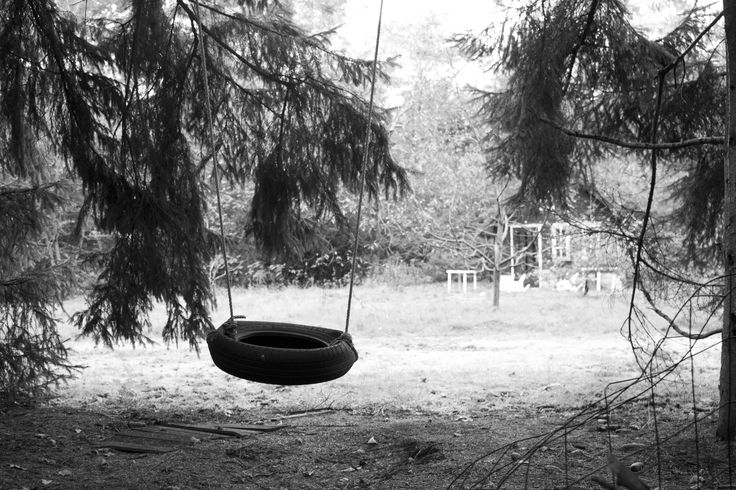 Lonely tire swing.
