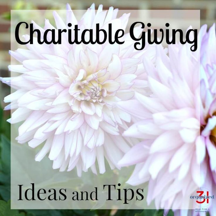 Charitable Giving Tips and Ideas you can do with your family or community group. Giving back to your community and random acts of kindness are important traits to practice and teach your children.