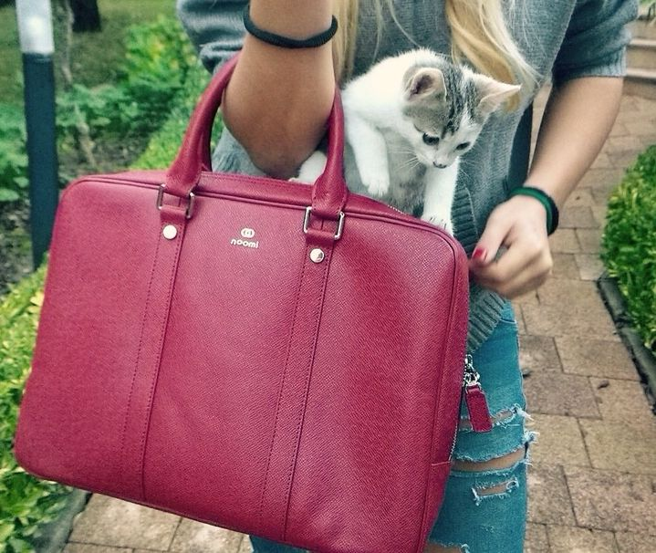 Regent #bag & Chicco #cat