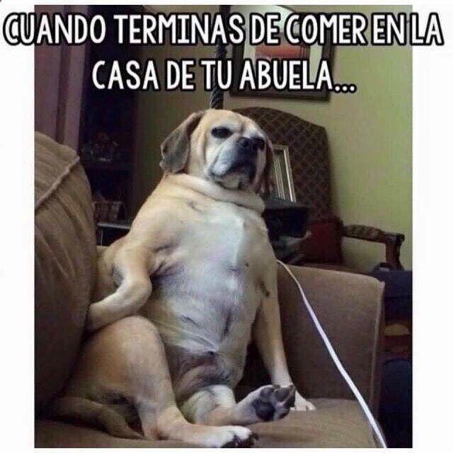 Imagenes de Humor Vs. Videos Divertidos - Mega Memeces ☛ http://www.diverint.com/fotos-memes-graciosos-bart-simpson-denigrante