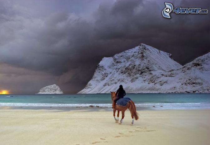 Caballos en la playa, caballo marrón, jinete, playa de arena, colinas cubiertas de nieve, Nubes de tormenta