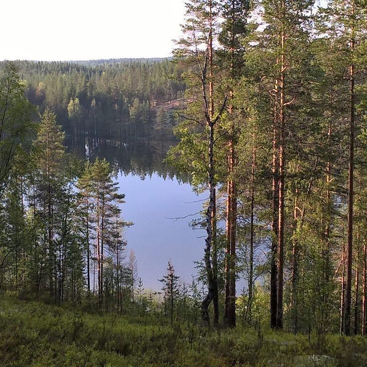 "33 tykkäystä, 1 kommenttia - Rokua Health & Spa Hotel (@rokuahealthspa) Instagramissa: ""#Rokua #Vaulujärvi #silence #lake #utajärvi  #rokuageopark #nationalpark #visitoulu #thisisfinland…"""