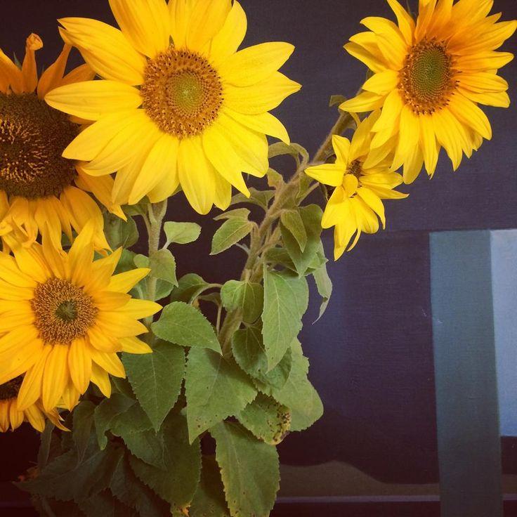 Muotoiluhuoneen maanantain kukat.