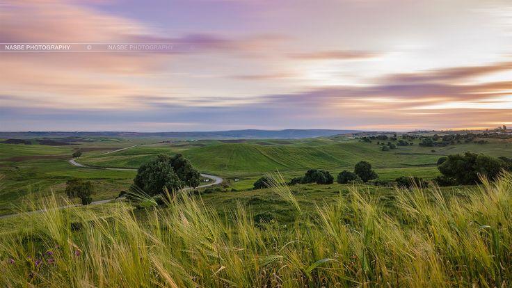 Photograph Grasslands by Nasbe Photography on 500px