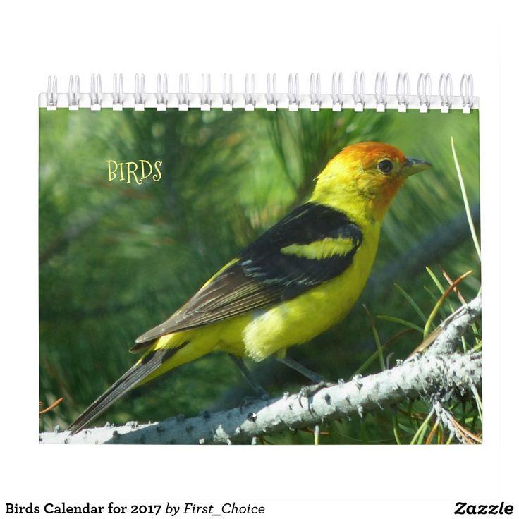 Birds Calendar for 2017