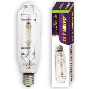 Apollo Horticulture GLBMH1000 1000 - Watt Metal Halide MH Grow Light Bulb Lamp by Apollo Horticulture. $29.95. Lamp Compatibility: Operates on 1000w magnetic and digital ballasts. Average Lamp Life: 10,000 Hours of Improved Lamp Life. Color Temp: 6500 Kelvin, Engineered for plant vegetative growth, Flicker free lamp if used with Apollo Ballasts. Lumens: 110,000, Base Type: Mogul E39 Base. Added extra stabilizers and reinforced glass casing for improved stability/safety. Th...