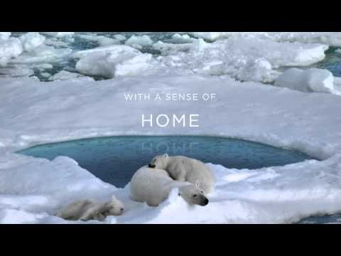 Coca-Cola's activation of its World Wildlife Fund partnership included cause marketing overlay, turning its red cans silver and more. Arctic Home Coca-Cola Commercial | Help Polar Bear Cubs, from YouTube