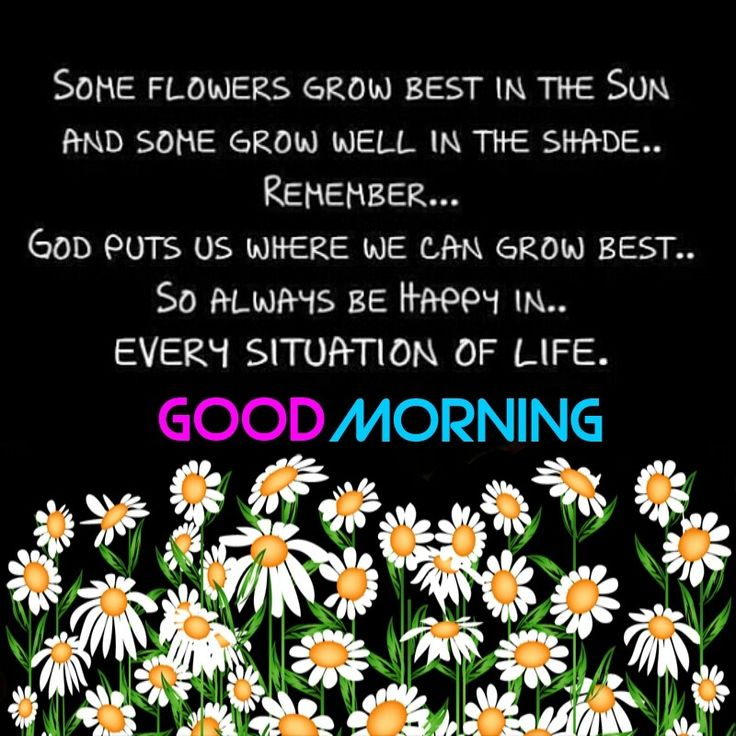 Good Morning...have a great day !