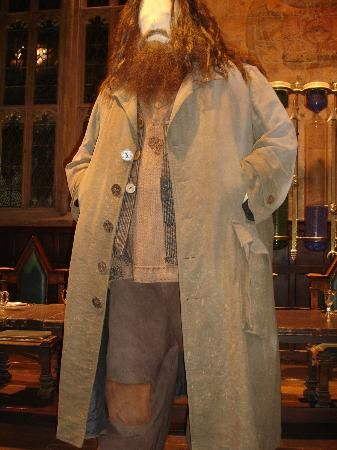 Hagrid costume for Cory. Definitely going to dress up for the Harry Potter festival this year.