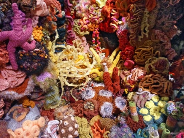 Hyperbolic Crochet Coral Reef VA 5