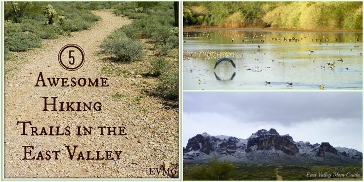 Five Awesome Hiking Trails in the East Valley. I love the Superstition Mountains!  #phoenixrealestate